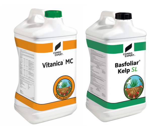 basfoliar-kepl-vitanica-mc-10-liter-fonte-compo.png
