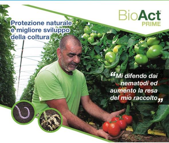 bayer-bioact-prime