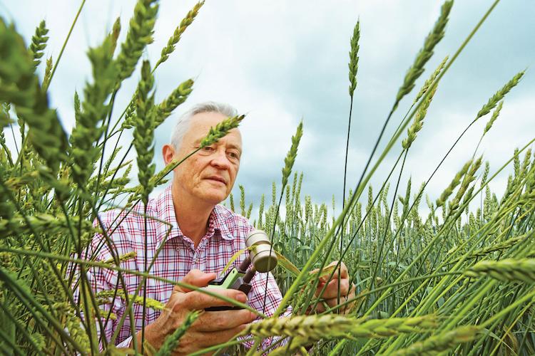 bayer-farming.jpg