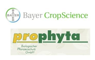 bayer-prophyta-logo