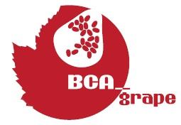 bca-grape-progetto-europeo-oidio-logo