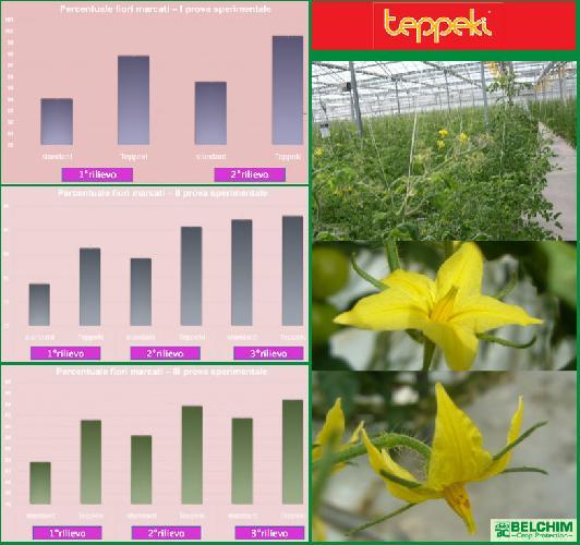 belchim-crop-protection-teppeki-risultati-prove-sperimentali