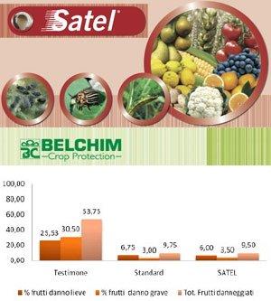 belchim-satel-logo-grafico