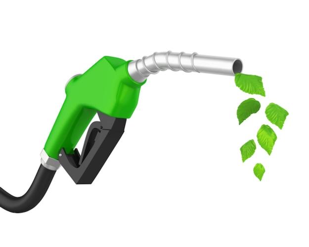 benzina-pompa-piante-foglie-pistola-biocarburanti-by-nerthuz-fotolia-750