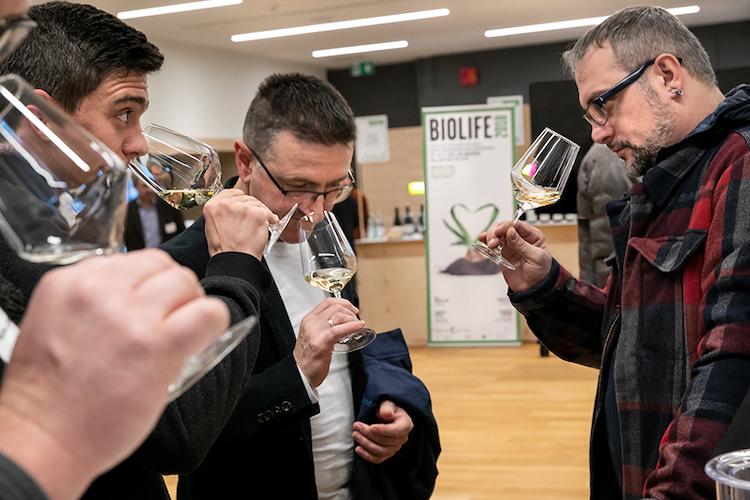 bio-wine-festival-foto-marco-parisi.jpg