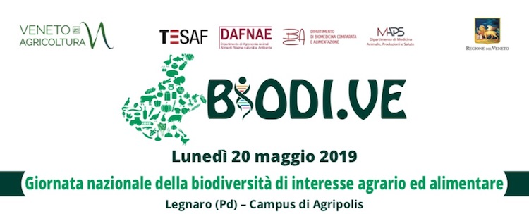 biodive-2019.jpg
