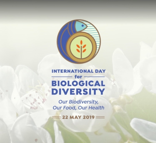 biodiversita-giornata-mondiale-2019-sito