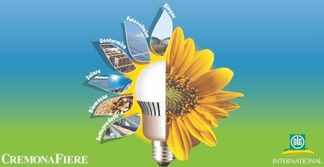bioenergy-2013-sito