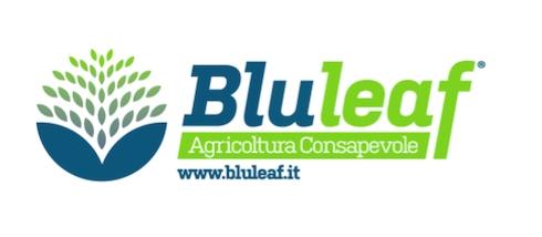 bluleaf-logo