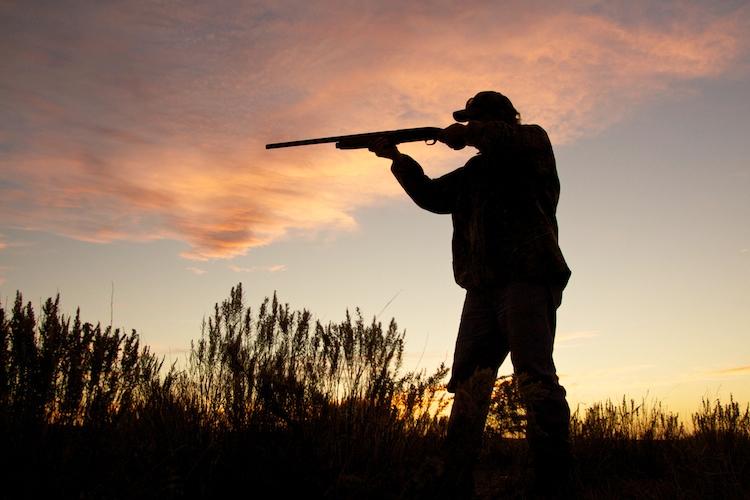 caccia-cacciatore-fucile-by-natureguy-fotolia-750