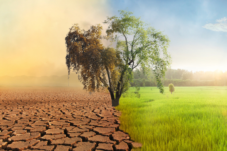 cambiamento-climatico-climate-change-by-piyaset-adobe-stock-750x500