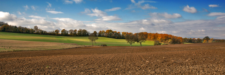 campagna-autunno-campi-campo-by-photo-passion-adobe-stock-750x250.jpeg