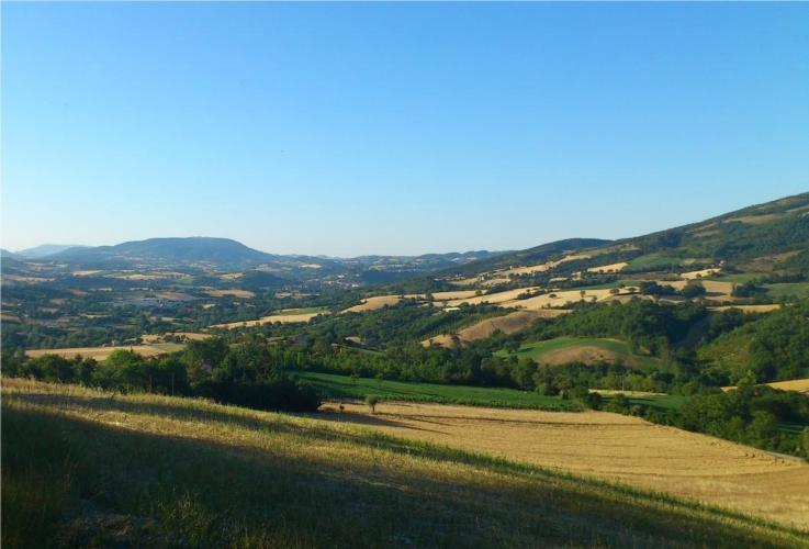 campagna-marche-paesaggio-by-frzebo-wikipedia-jpg