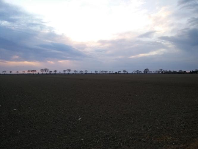 campi-lavorati-letto-semina-paesaggio-750-by-matteo-giusti-agronotizie