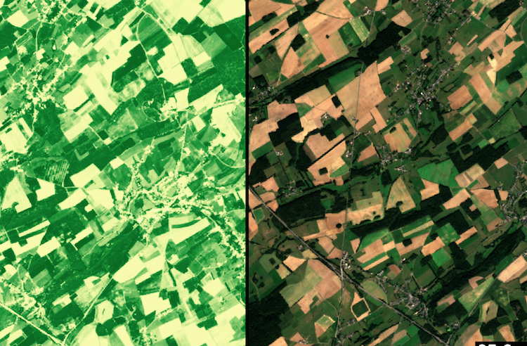 Sensing4Farming, accoppiata vincente tra Iot e satelliti