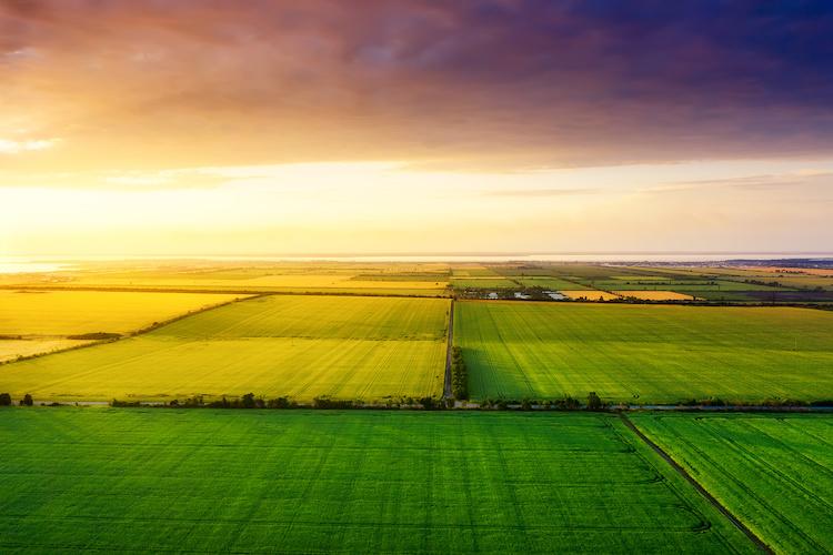 campo-agricoltura-campi-by-biletskiy-evgeniy-adobe-stock-750x500