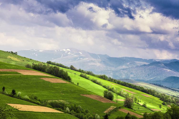 campo-agricoltura-paesaggio-by-oksix-fotolia-750