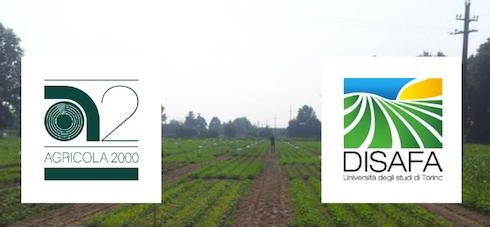 campo-demo-2016-disafa-agricola-2000