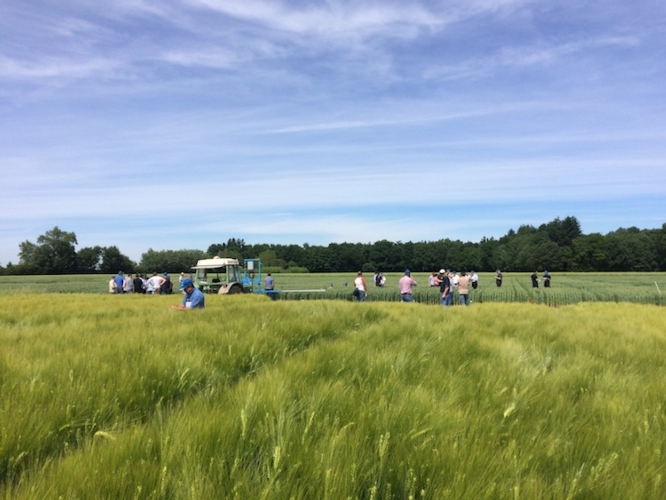 campo-fonte-eurochem-agro.jpg
