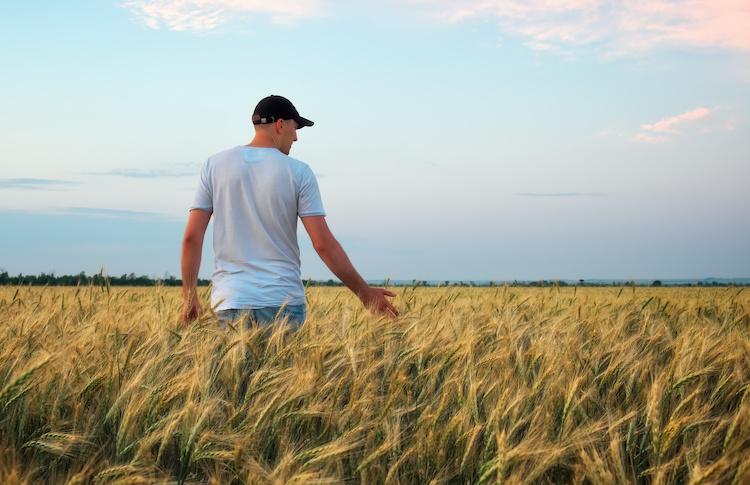 campo-grano-frumento-agricoltore-giovani-by-es0lex-adobe-stock-750x485