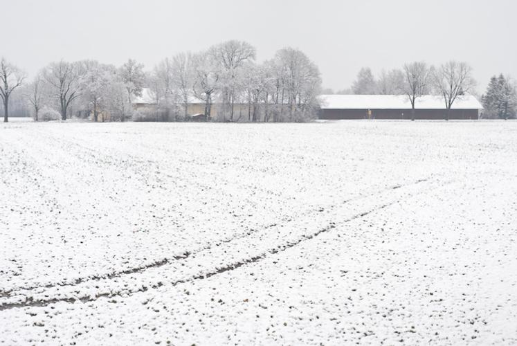 campo-innevato-neve-campi-innevati-inverno-by-etien-fotolia-750
