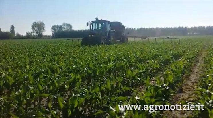 campo-trattore-azienda-agricola-porto-felloni-lagosanto-fe