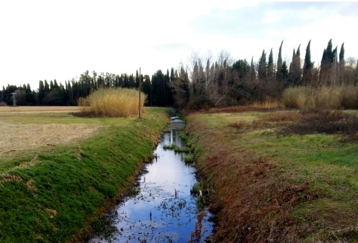 canale-bonifica-750-by-matteo-giusti-agronotizie