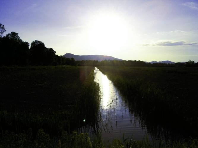 canale-bonifica-acque-superficiali-agricoltura-by-matteo-giusti-agronotizie-jpg1