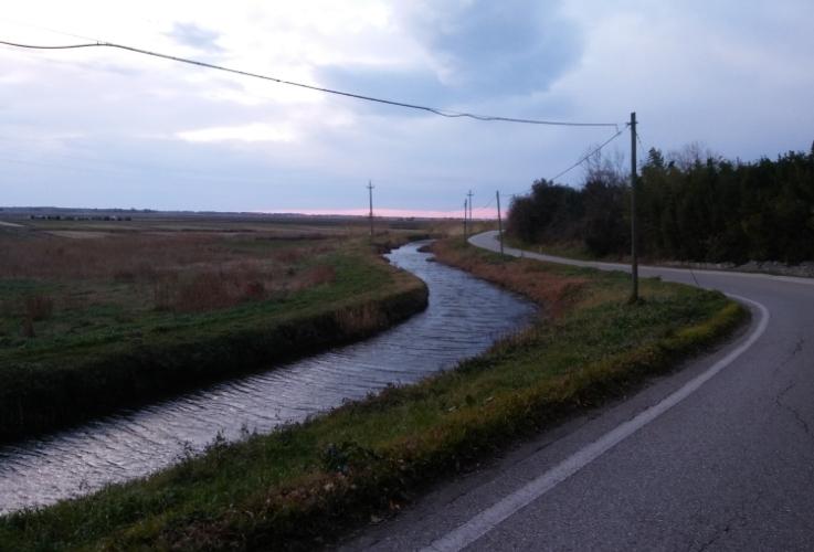 canale-bonifica-strada-750-by-matteo-giusti-agronotizie-jpg.jpg