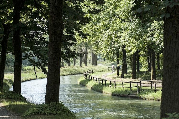 canale-nel-cremonese-fonte-francesco-radino-anbi-lombardia