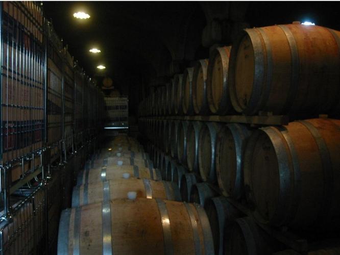 cantina-barique-stoccaggio-vino-by-stefan-bethke-wikipedia-jpg.jpg