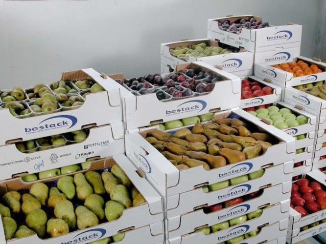 cartone-ondulato-frutta-bestack.jpg