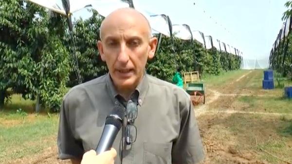 caruso-stefano-tecnico-consorzio-fitosanitario-modena