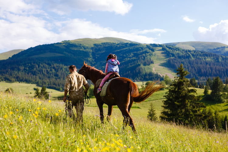 cavalli-equitazione-cavallo-by-angelov-fotolia-750