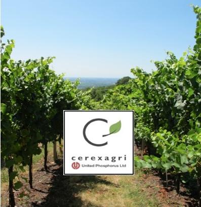 cerexagri-convegni-viticoltura-bio