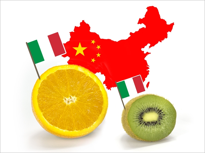 chinese-kiwi-arancia2