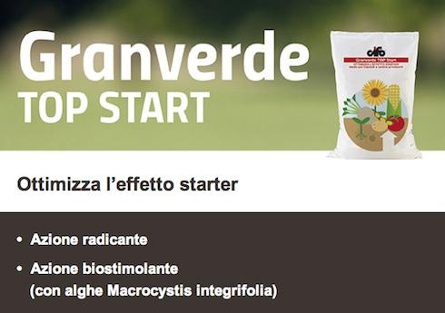 cifo-granverde-top-start