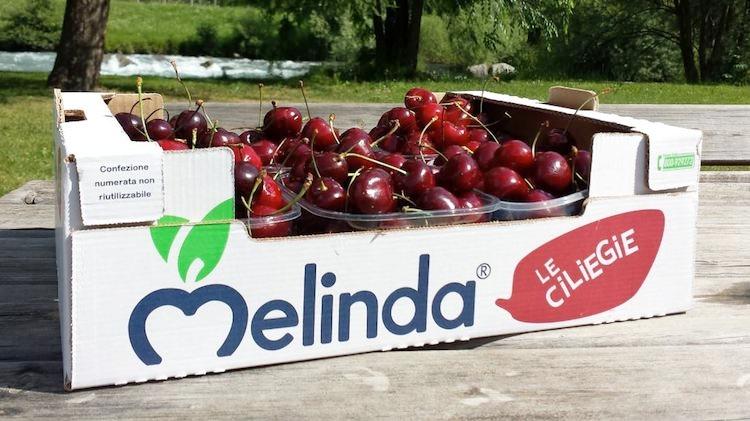 ciliegie-melinda-confezione