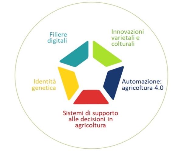 cinque-componenti-della-innovazione-in-agricoltura-giu-2019-fonte-pietro-torresan