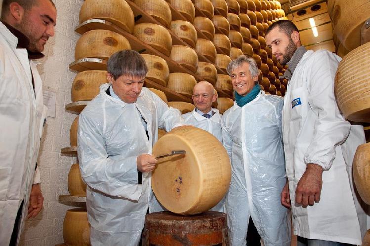 ciolos_bruni_formaggio