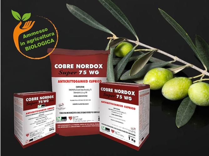 cobre-nordox-fonte-quimica-masso