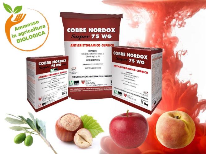 cobre-nordox-super-75-wg-fonte-quimica-masso