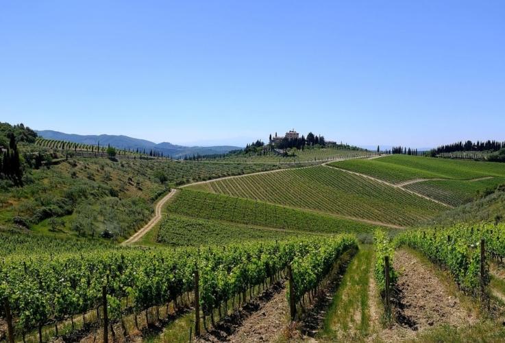 colline-paesaggio-vitu-toscana-chianti-by-davide-taviani-wikipedia.jpg