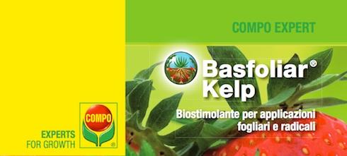 compo-expert-basfoliar-kelp