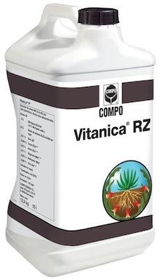 compo-export-vitanica-rz-confezione1