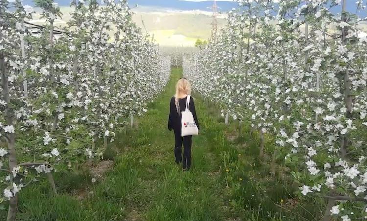 Agricoltura sostenibile, vincono Biancaneve e il Tirolo