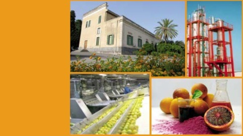 convegno-innovazioni-industria-derivati-agrumari-25-maggio-2012
