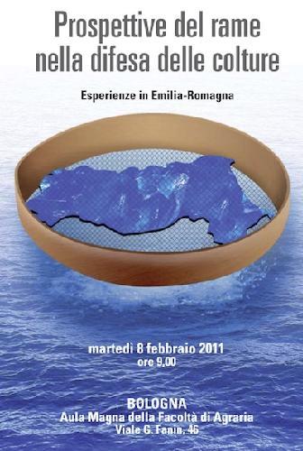 convegno-rame-difesa-bologna-febbraio2011.jpg