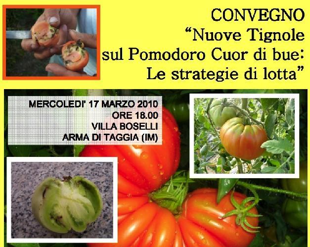 convegno-strategie-lotta-contro-tignole-pomodoro-tuta-absoluta-syngenta-marzo2010