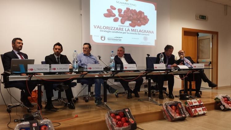 convegno-valorizzare-la-melagrana-29mag14-bologna-tavolo-relatori